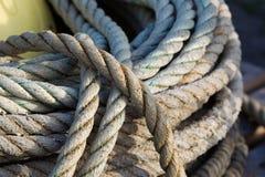 纤维自然绳索 库存照片