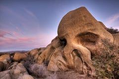 约书亚国家公园岩石头骨结构树 免版税库存照片