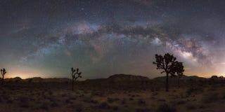 约书亚树国家公园银河全景 库存图片