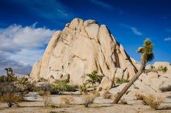 约书亚树-交叉点摇滚的约书亚树国家公园 免版税库存照片