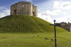 约克城堡 库存图片