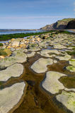 约克夏海岸-罗宾敞篷海湾 库存照片