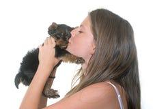 年轻约克夏狗和孩子 免版税库存图片