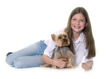 约克夏狗和少年 免版税库存图片