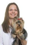 年轻约克夏狗和青少年 库存照片