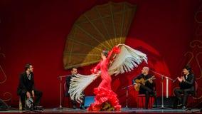 约兰达大砂-佛拉明柯舞曲舞蹈家 免版税库存照片