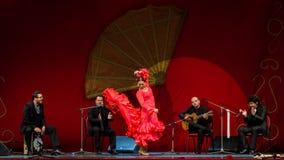 约兰达大砂-佛拉明柯舞曲舞蹈家 库存照片