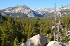 约塞米蒂国家公园,加利福尼亚 库存图片