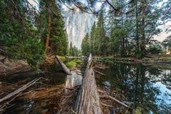 约塞米蒂国家公园 加利福尼亚 库存照片