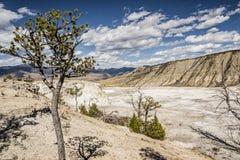约塞米蒂国家公园 库存图片