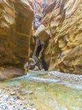 约旦,旱谷Al mujib自然储备的大峡谷 图库摄影
