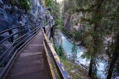 约翰斯顿峡谷在班夫国家公园 免版税库存照片