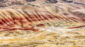 约翰迪化石床被绘的小山  库存图片