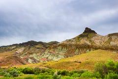 约翰迪化石床绵羊岩石单位风景 库存照片