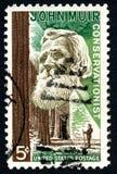 约翰・缪尔美国邮票 库存图片
