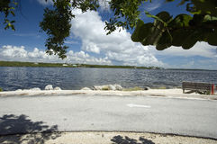 约翰Pennekamp珊瑚礁国家公园 图库摄影