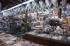 纪念品店在基韦斯特岛,佛罗里达 免版税库存图片