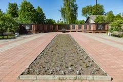 纪念复合体致力在第二次世界大战的胜利,梅什金,俄罗斯 库存图片