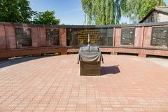 纪念复合体致力在第二次世界大战的胜利,梅什金,俄罗斯 免版税图库摄影