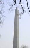 纪念碑华盛顿 库存图片