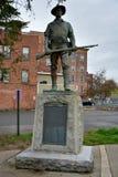 纪念碑在Cohoes, NY,对Cohoes的人,服务他们的c 库存图片
