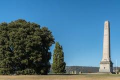 纪念碑战争纪念建筑和树在霍巴特,澳大利亚 库存图片