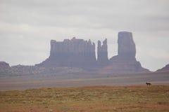 纪念碑谷在美国2013年 免版税库存图片