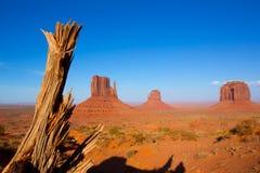 纪念碑谷西部和东部手套和梅里克小山 库存照片