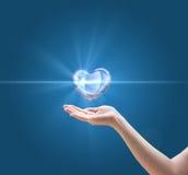 纯净和健康心脏的概念 免版税库存照片
