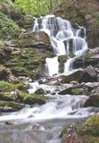 纯净和冷的山河跑在岩石石头之间并且流动入瀑布 免版税库存照片