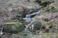 纯净的小的瀑布在深森林里 免版税库存照片