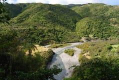 100%纯净的新西兰 库存照片