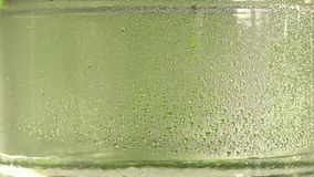 纯净的水或酒精滴水下落在一个玻璃瓶子里面的,在绿色背景 蒸馏过程 特写镜头 股票视频