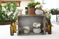 纯净的白花的花卉构成 库存图片