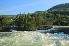 纯净的自然在挪威 免版税库存照片