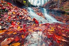 纯净的水瀑布的美丽的景色在秋天森林地 库存图片