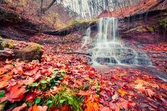 纯净的水瀑布的美丽的景色在秋天森林地 免版税库存照片