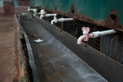 纯净&救球饮用水在印度 免版税库存照片