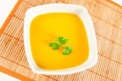 纯汁浓汤 免版税库存照片