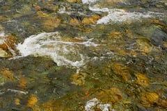 纯河三透明不同的水 免版税图库摄影