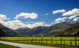 纯然地美丽的牧场地在新西兰的南岛 免版税库存图片