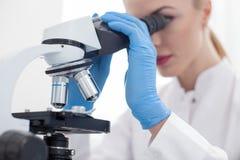 纯熟年轻研究员在实验室工作 库存图片