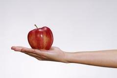 纯的苹果 图库摄影