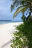 纯美丽和自然海滩03 库存图片