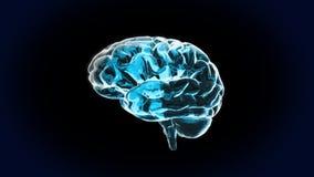纯脑子的水晶 库存照片