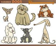 纯血统的动物狗动画片集 库存例证