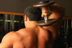 纯1块的肌肉 图库摄影