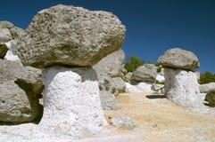 纱架蘑菇谷 库存照片