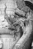 纳卡人的国王 免版税库存照片
