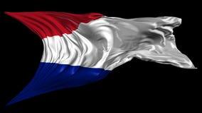 纳塔利娅共和国旗子  向量例证